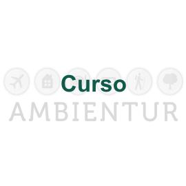 CURSO: SAIBA COMO IMPLEMENTAR A NBR 15401